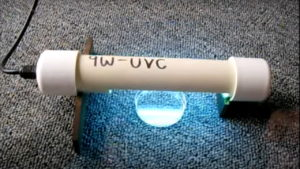 Effect of UV on Bacteria - Time Lapse